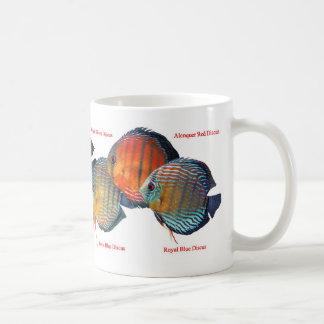 ワイルド・ディスカスのマグカップ TASSE