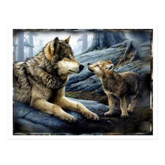 2 Wolf-Postkarte Postkarte