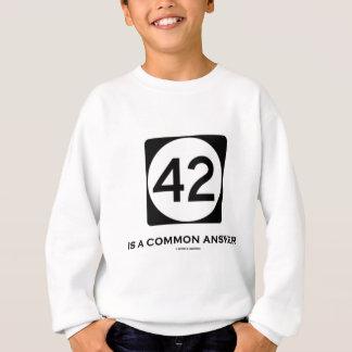 42 ist eine allgemeine Antwort (Zeichen-Spaß) Sweatshirt