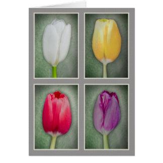 4 Tulpen Karte