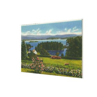 Abhang-Ansicht von Diamant-Insel und See Gespannte Galeriedrucke