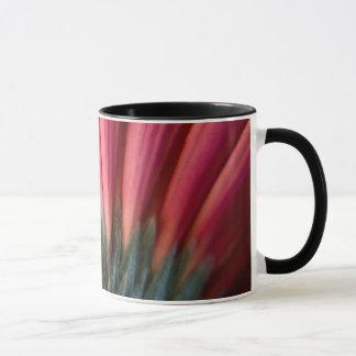 Abstrakte makro rote und rosa Gerbera-Blume Tasse