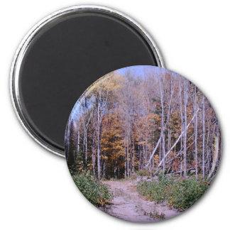 Addieren Sie Ihren pic-Magneten 15 Runder Magnet 5,1 Cm
