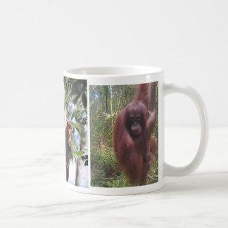 Affe und Orang-Utan Borneo Kaffeetasse