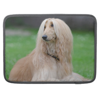 AfghanenhundeFoto, Macbook Prohülse Sleeves Für MacBook Pro