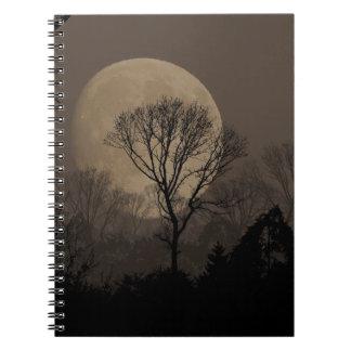 african moon notizblock