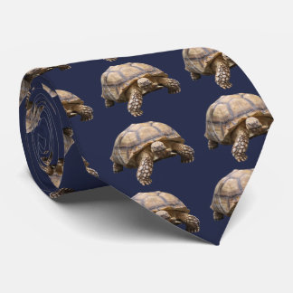 African spurred tortoise krawatte