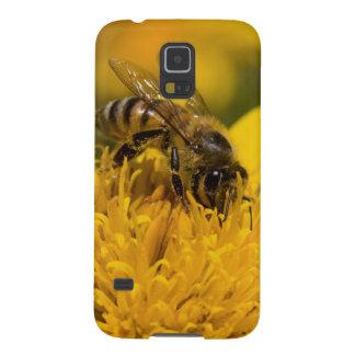 Afrikanische Honig-Biene mit dem Samsung S5 Cover