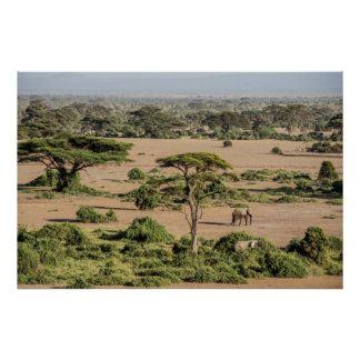 Afrikanische Landschaft mit Elefanten Poster