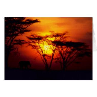 Afrikanische Sonnenuntergang-Karte Grußkarte