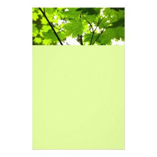 Ahorn-Blätter mit Regentropfen Briefpapier