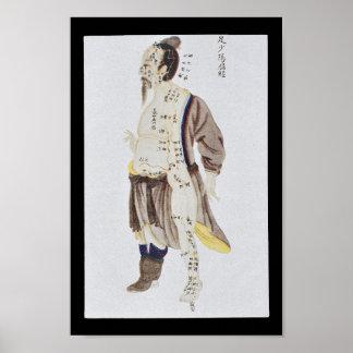 Akupunktur-Gallenblase-Mittagsfuß Shaoyang Poster