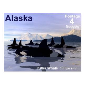 Alaska-Mörder-Wal-Briefmarke Postkarte