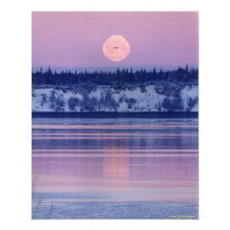 Alaskische Landschaft Fotodrucke