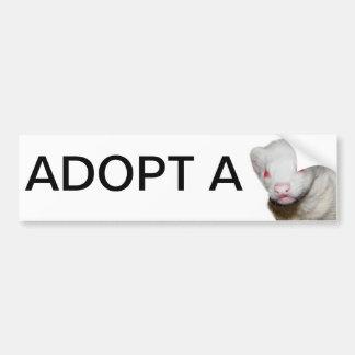 Albino-Frettchen-Bild Autoaufkleber