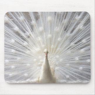 Albino-Pfauentwurf Mousepads