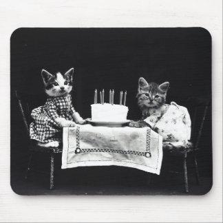 Alles Gute zum Geburtstag Meow | Kätzchen mit Mauspads