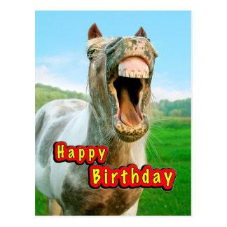 Zum Geburtstag Ein Pferd Alles Alles Gute Zum Geburtstag Lustig