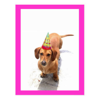 Alles- Gute zum GeburtstagDackel-Postkarte Postkarten