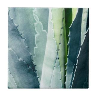 Aloe - MakroKunst-Fotografie Fliese