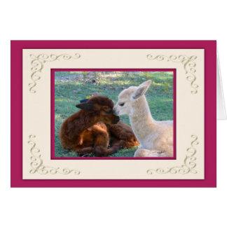 Alpaka-Baby-Liebe-Valentinstag-Karten Karte