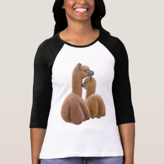 Alpaka-Liebe-DamenRaglan Jersey T-Shirt