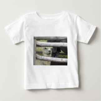 Alpaka (Vicugna pacos) Bretterzaun heraus schauend Baby T-shirt
