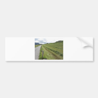 Alpine Weide mit Stapel des Gras-Blechschrotts Autoaufkleber