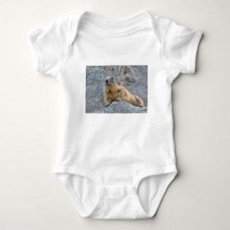 Alpines Murmeltier auf dem roch Baby Strampler