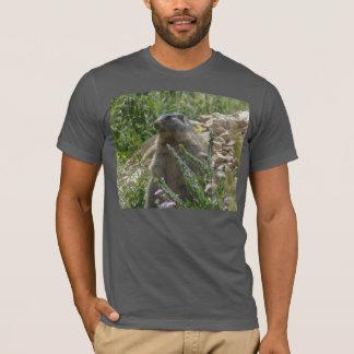 Alpines Murmeltier, das sich T - Shirt hinsitzt