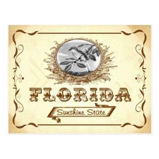 Alte Postkarte 1910 Vintager Blick-Floridas