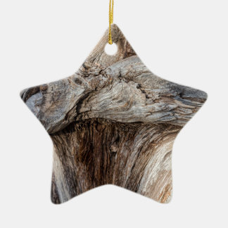 Alte Schlucht-Baum-Beschaffenheit Keramik Ornament