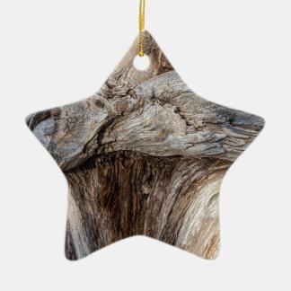Alte Schlucht-Baum-Beschaffenheit Keramik Stern-Ornament