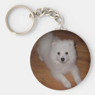 American_Eskimo_Dog_puppy Schlüsselanhänger