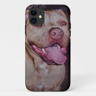 American Staffordshire Bull Terrier iPhone 11 Hülle