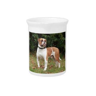 Amerikanischer Bulldoggen-Hund Krug