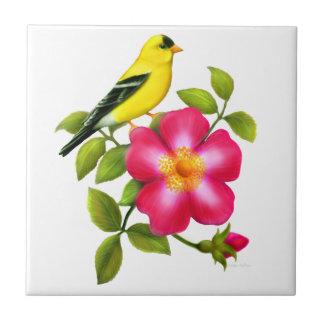 Amerikanischer Goldfinch auf wilder Kleine Quadratische Fliese