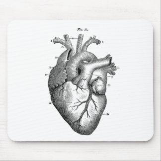 Anatomie-Herz-Bild-Vintag Mousepads