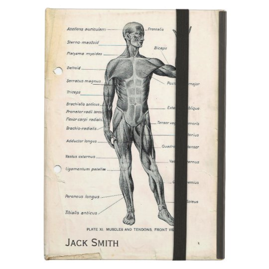 Anatomie-vorhergehende und hintere Vintage | Zazzle.at