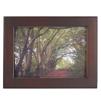 Andenken-Kasten. Holz. Maße: 16,5 cm x 21,6 cm Erinnerungsdose