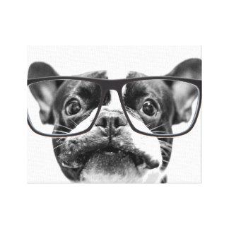 Angesehene französische Bulldogge mit Gläsern Gespannte Galerie Drucke