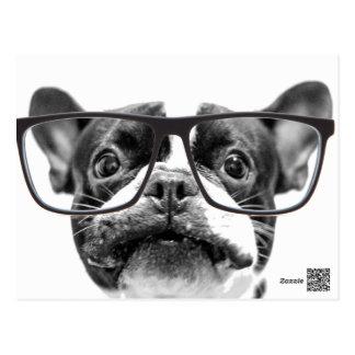 Angesehene französische Bulldogge mit Gläsern Postkarte