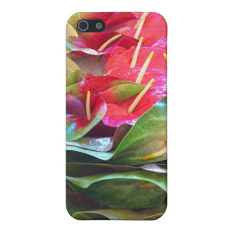 Anthiriums Etui Fürs iPhone 5
