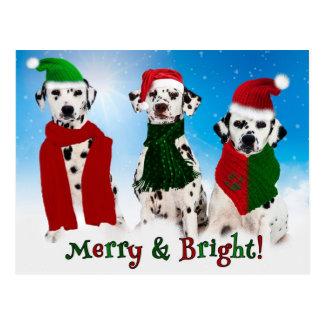 APAL - Weihnachtsdalmatiner-Hunde Postkarten