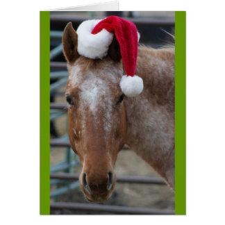 Appaloosa mit Weihnachtsmannmütze Karte