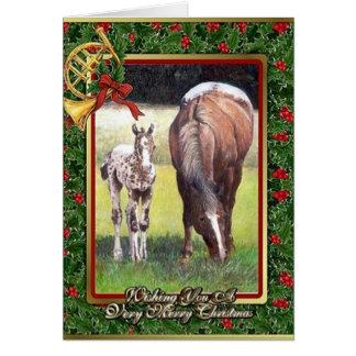 Appaloosa-Pferderaum-Weihnachtskarte Karte