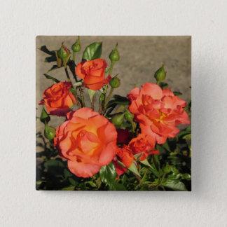 Aprikosen-Kathedralen-Rosen Quadratischer Button 5,1 Cm