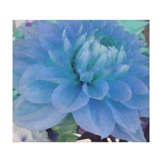 Aqua-Blau-Dahlie Gespannte Galerie Drucke