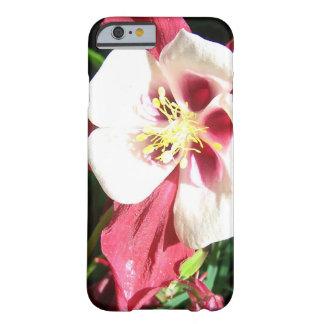 Aquilegia Blumen-Telefonkasten Barely There iPhone 6 Hülle