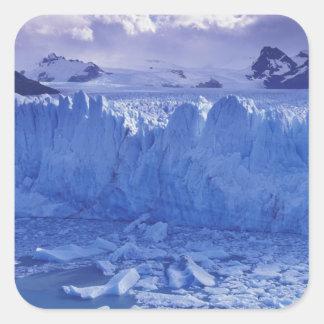 Argentinien, Patagonia, Parque Nacional los Quadrat-Aufkleber